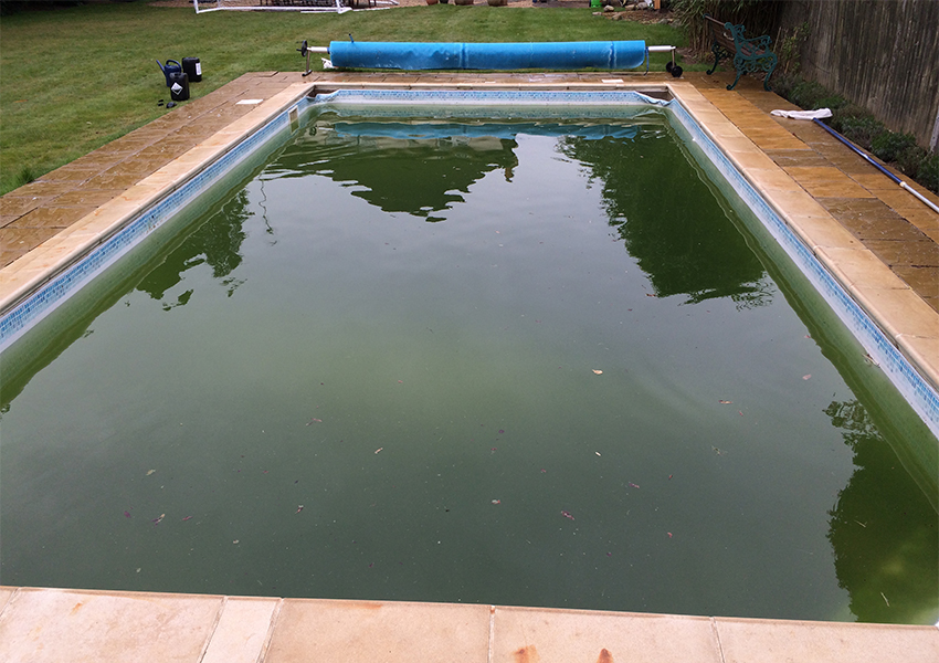 Green pool water treatment before